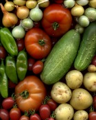 legume.jpg