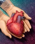 Ce mancam pentru a scadea nivelul colesterolului