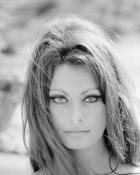 Actrita Sophia Loren revine pe marile ecrane la 78 de ani